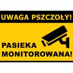 Średnia tablica ostrzegawcza - wzór F229