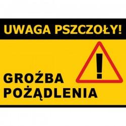 Duża tablica ostrzegawcza - wzór F331